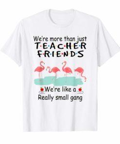 We're More Than Just Teacher Friends Flamingo T Shirt