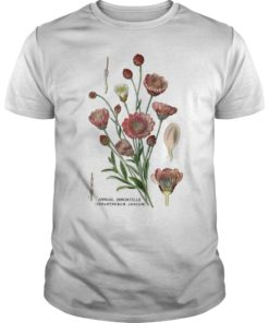 Xeranthemum Annuum T-Shirt
