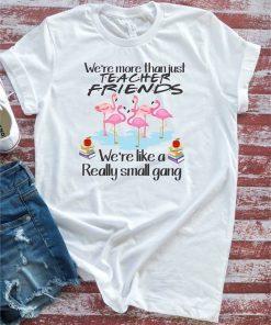 We're More Than Just Teacher Friends Flamingos Men's and Women's Gift Tee Shirt