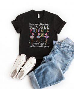 We're More Than Just Teacher Friends Flamingos Men's and Women's Shirt
